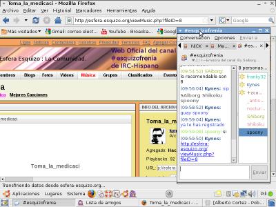 Comunidad virtual del canal #esquizofrenia del IRC-Hispano